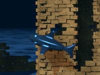 Погоня за акулой